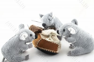 Mousy investigating a fur boot