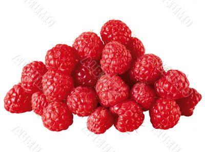Appetite raspberry