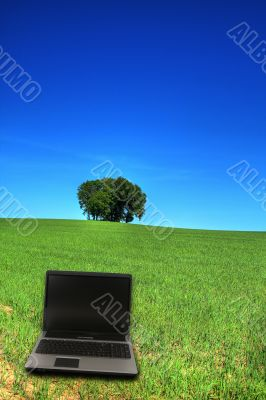 serene grassland and a notebook