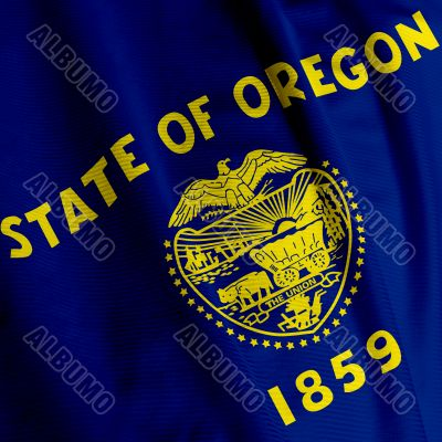 Oregon Flag Closeup