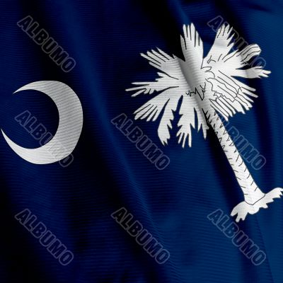 South Carolina Flag Closeup