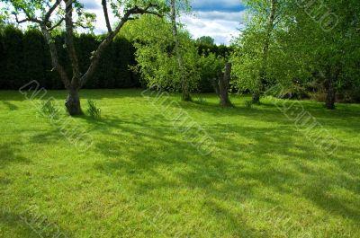 peaceful garden