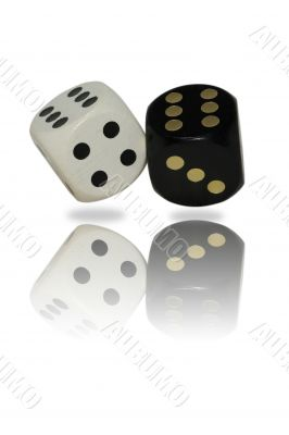 isolated dice