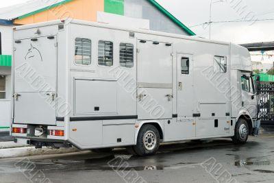 Transport for horses