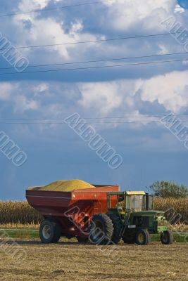 Tractor Carrying Harvest