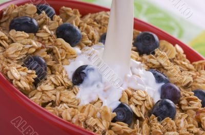 Bowl of Granola and Boysenberries and Milk