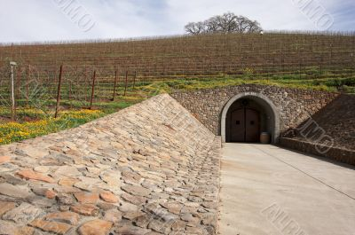 Vineyard Hillside with Cellar Entry and Trees