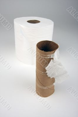 Empty and Full Toilette Paper Rolls