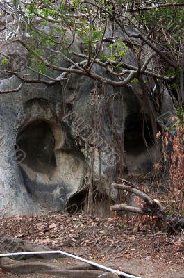 Skull Rock tall