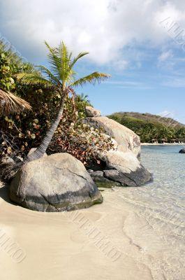 Island Oasis