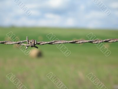 barbed wire fence close-up