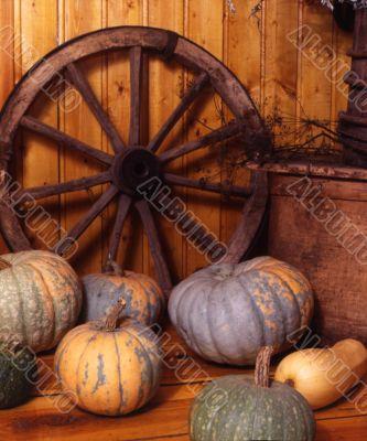 pumpkin and wheell