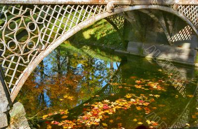 Fallen leaves in water under arc of bridge