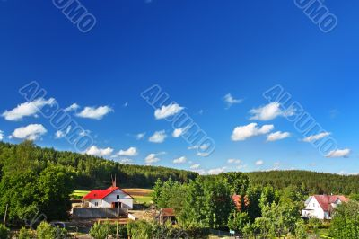 countryside with cottages and forest