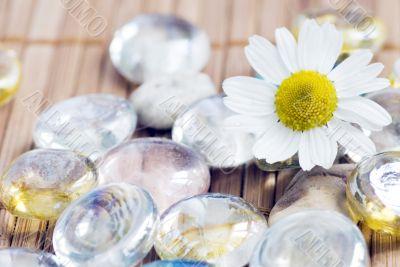 Chamomile and pebble - spa concept