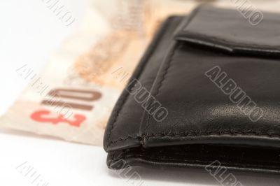 Euro wallet 3