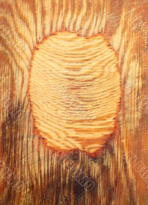 Texture - old wooden board