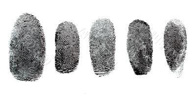 Fingerprint Set