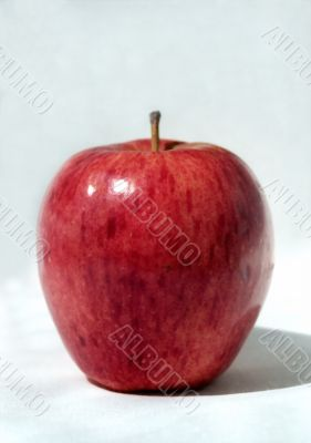 Simply red apple