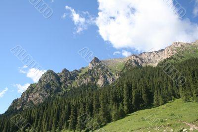 Mountain spine