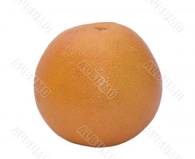 Orange freshness grapefruit
