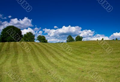 nice rural landscape over blue sky