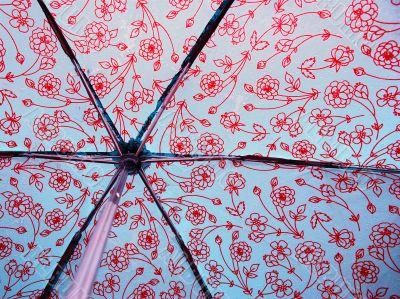 Behind a Wet Umbrella