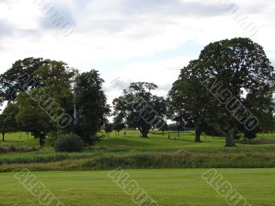 View on the golf course