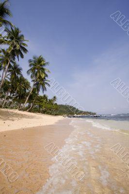 summer paradise landscape