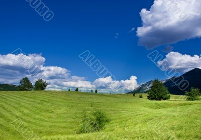 cultivated field over the blue sky