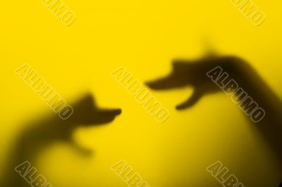 Shadow hand puppets - Dog`s heads
