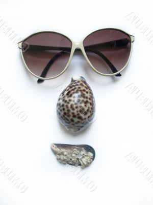 face. solar glasses and seashells