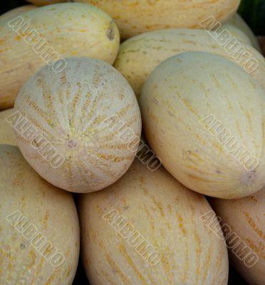 Uzbek melons on the market