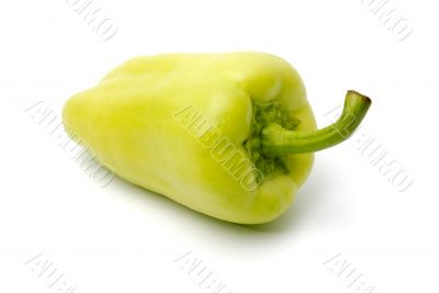 Sweet bulgarian pepper