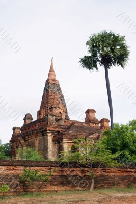 Brick pagoda and palm tree in Bagan, Myanmar
