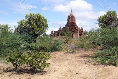 Footpath to the pagoda