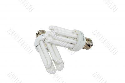 Two electric energy-saving light bulbs