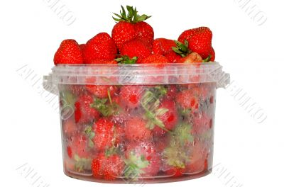The cooled strawberry with dew drops in special vacuum packing