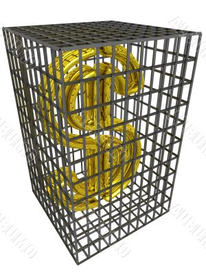 Gold dollar in a steel cage.