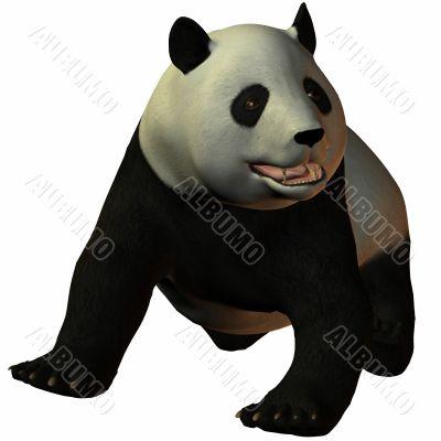 Toon Panda