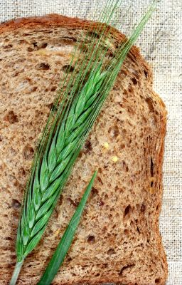 Slice of bread and rye