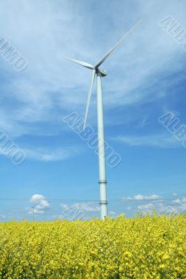 a windturbine into a rape field