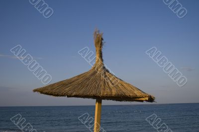 Single thatched umbrella