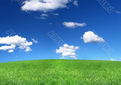 panoramic view of peaceful grassland