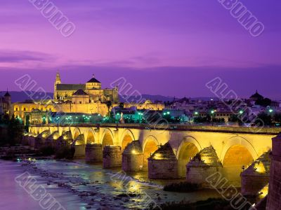 Cordoba Bridge.
