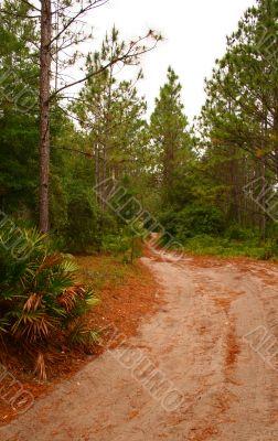 Off Road Trail