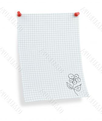 thumbtacked squared paper with flower motif