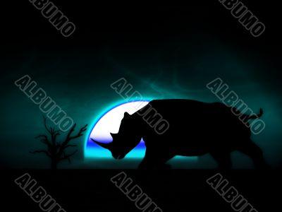 Rhino Wildlife 35