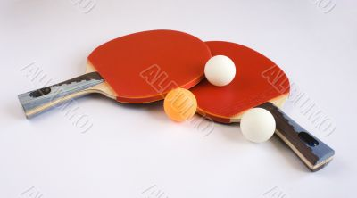 Sports Equipment for Table Tennis