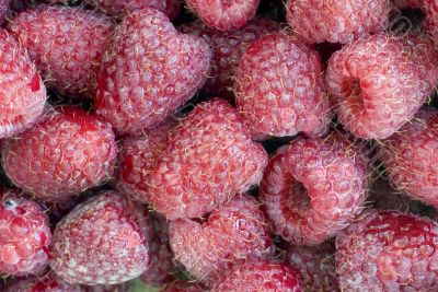 Abstract background from a fresh ripe raspberry